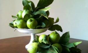 limone-di-siracusa-igp-verdello
