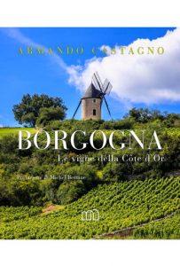 Borgogna. Le vigne della Côte d'Or