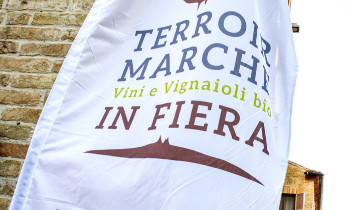 Terroir Marche Festival