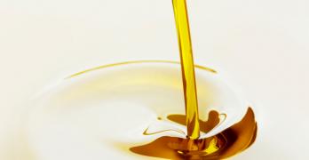 olionline corsi oleonauta