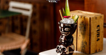 cocktail Arrow Frog