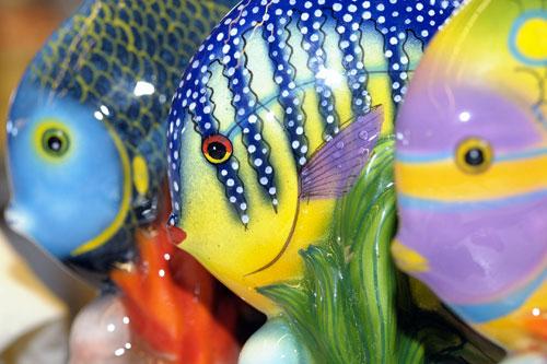 SlowFish Slowfoodlazio