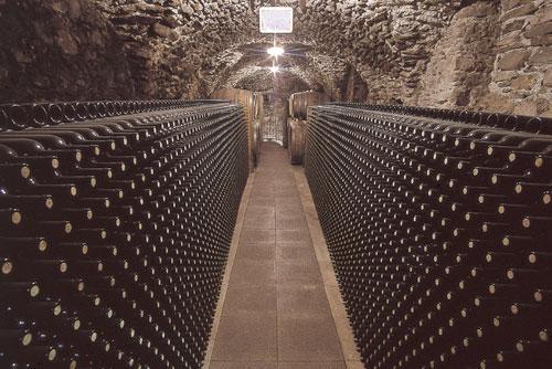 vinivaltellina