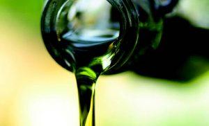 Conoscere l'olio extravergine d'oliva